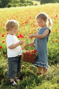 11435324-little-girl-giving-flower-to-boy[1]